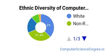 Other Computer Software Majors in CA Ethnic Diversity Statistics