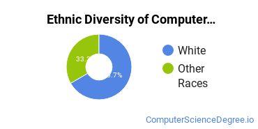 Other Computer Software Majors in VA Ethnic Diversity Statistics