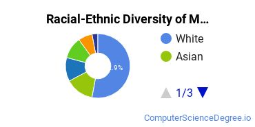 Racial-Ethnic Diversity of Modeling, Virtual Environments and Simulation Students with Bachelor's Degrees