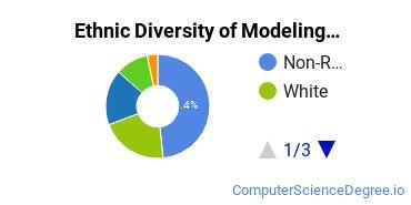Virtual Modeling & Simulation Majors in CA Ethnic Diversity Statistics