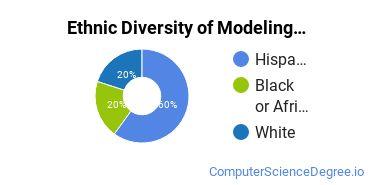 Virtual Modeling & Simulation Majors in FL Ethnic Diversity Statistics