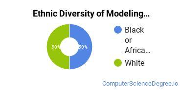 Virtual Modeling & Simulation Majors in VA Ethnic Diversity Statistics