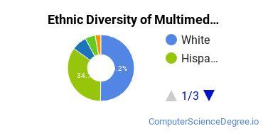 Web & Multimedia Design Majors in AZ Ethnic Diversity Statistics