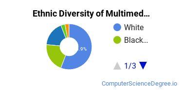 Web & Multimedia Design Majors in AR Ethnic Diversity Statistics