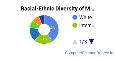 Racial-Ethnic Diversity of Multimedia Design Students with Bachelor's Degrees