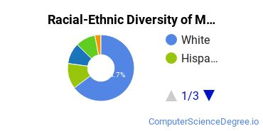 Racial-Ethnic Diversity of Multimedia Design Basic Certificate Students