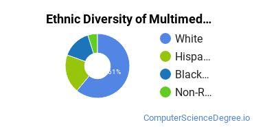 Web & Multimedia Design Majors in CT Ethnic Diversity Statistics