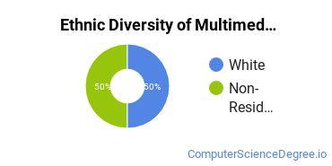 Web & Multimedia Design Majors in DE Ethnic Diversity Statistics