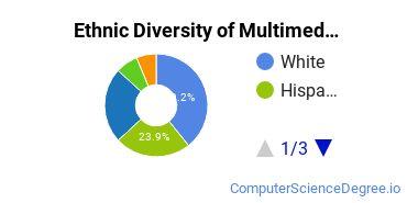 Web & Multimedia Design Majors in FL Ethnic Diversity Statistics