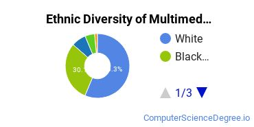 Web & Multimedia Design Majors in GA Ethnic Diversity Statistics