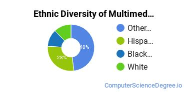 Web & Multimedia Design Majors in HI Ethnic Diversity Statistics