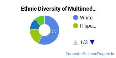 Web & Multimedia Design Majors in IL Ethnic Diversity Statistics