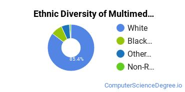 Web & Multimedia Design Majors in IN Ethnic Diversity Statistics