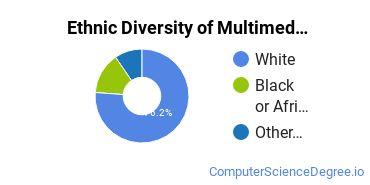 Web & Multimedia Design Majors in KS Ethnic Diversity Statistics