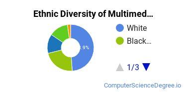 Web & Multimedia Design Majors in MD Ethnic Diversity Statistics