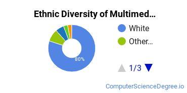 Web & Multimedia Design Majors in MA Ethnic Diversity Statistics
