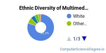 Web & Multimedia Design Majors in MN Ethnic Diversity Statistics