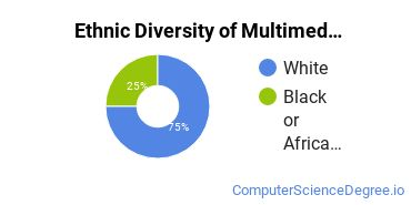 Web & Multimedia Design Majors in MS Ethnic Diversity Statistics