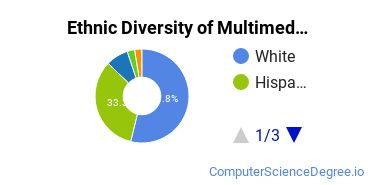 Web & Multimedia Design Majors in NJ Ethnic Diversity Statistics