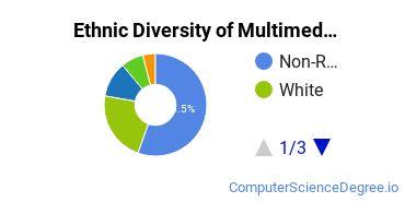 Web & Multimedia Design Majors in NY Ethnic Diversity Statistics