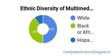 Web & Multimedia Design Majors in NC Ethnic Diversity Statistics