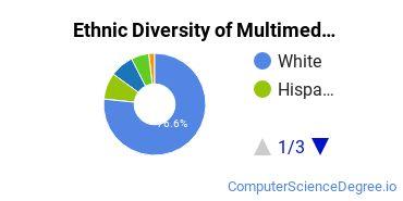 Web & Multimedia Design Majors in OH Ethnic Diversity Statistics
