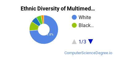 Web & Multimedia Design Majors in PA Ethnic Diversity Statistics