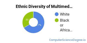 Web & Multimedia Design Majors in RI Ethnic Diversity Statistics