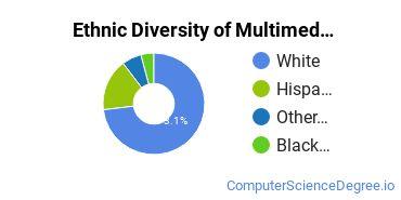 Web & Multimedia Design Majors in TN Ethnic Diversity Statistics