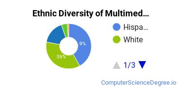 Web & Multimedia Design Majors in TX Ethnic Diversity Statistics