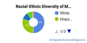 Racial-Ethnic Diversity of Multimedia Design Undergraduate Certificate Students