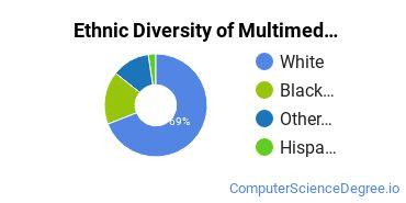 Web & Multimedia Design Majors in VA Ethnic Diversity Statistics