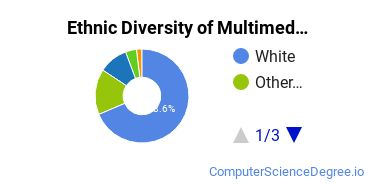 Web & Multimedia Design Majors in WA Ethnic Diversity Statistics