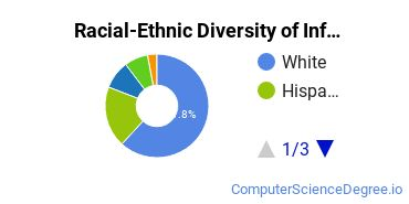 Racial-Ethnic Diversity of Info Systems Associate's Degree Students