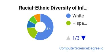 Racial-Ethnic Diversity of Info Systems Bachelor's Degree Students