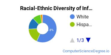 Racial-Ethnic Diversity of Info Systems Basic Certificate Students