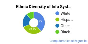 Information Systems Majors in CA Ethnic Diversity Statistics
