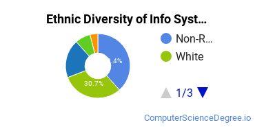 Information Systems Majors in FL Ethnic Diversity Statistics