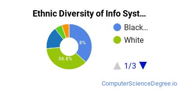 Information Systems Majors in GA Ethnic Diversity Statistics