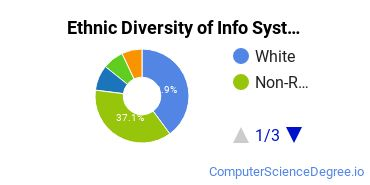 Information Systems Majors in IL Ethnic Diversity Statistics