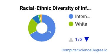 Racial-Ethnic Diversity of Info Systems Master's Degree Students