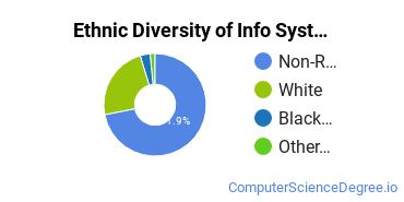 Information Systems Majors in NE Ethnic Diversity Statistics