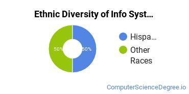 Information Systems Majors in NV Ethnic Diversity Statistics