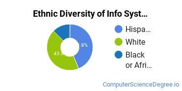 Information Systems Majors in NJ Ethnic Diversity Statistics