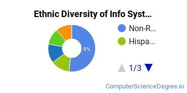Information Systems Majors in NY Ethnic Diversity Statistics