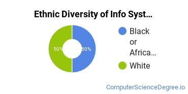 Information Systems Majors in NC Ethnic Diversity Statistics