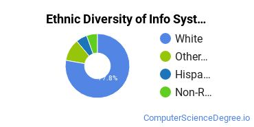 Information Systems Majors in ND Ethnic Diversity Statistics