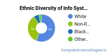 Information Systems Majors in PA Ethnic Diversity Statistics