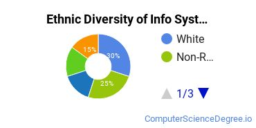 Information Systems Majors in TN Ethnic Diversity Statistics