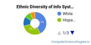 Information Systems Majors in TX Ethnic Diversity Statistics